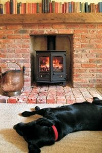 multi fuel burning stove in living room with a dog in the foreground