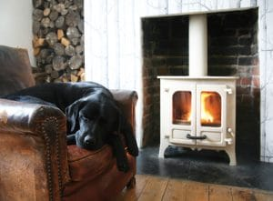 dog sleeping on chair in front of a wood burning stove