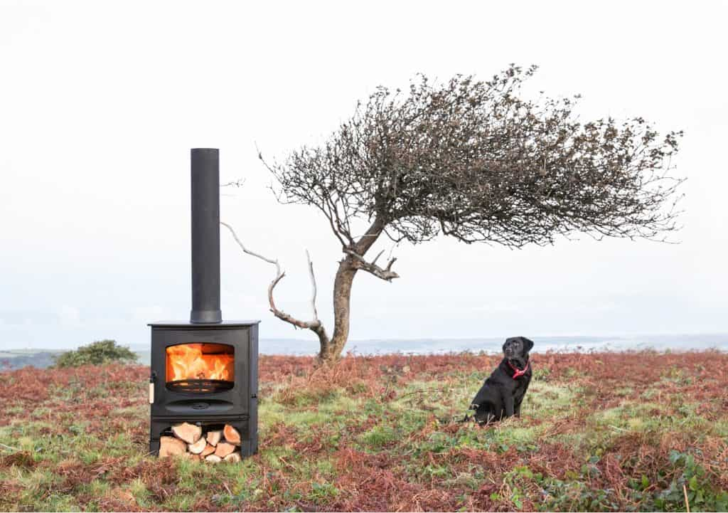 outdoor image of a charnwood wood burning stove in a field with a tree and a dog